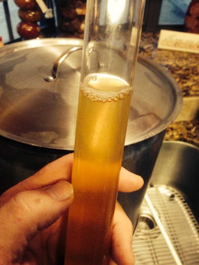 Looks like SRM 3.2  to me...Naked Honey Blonde!
