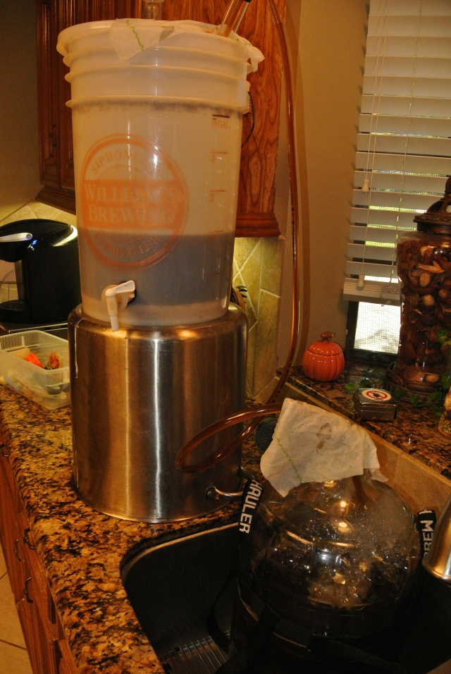 Making the transfer - primary fermenter to the secondary.